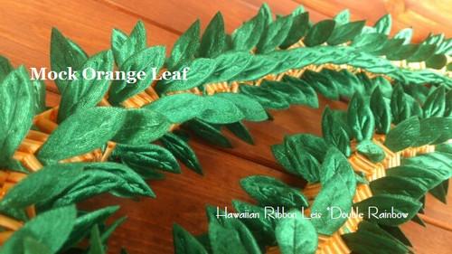Mock Orange Leaf